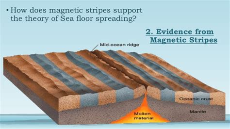 Evidence For Seafloor Spreading Has Come From by Seafloor Spreading Theory Discuss 3