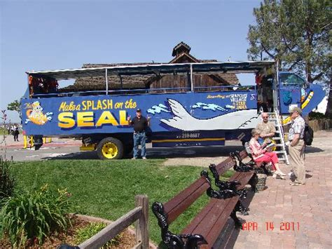 Seal Boat San Diego by Seal Boat Picture Of San Diego Seal Tours San Diego