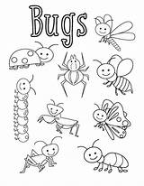Bugs Coloring Sheets Preschool Activities Bug Insects Kindergarten Insect Worksheets Funnycrafts Printable Craft Children Different Dibujos Spider Jardinage Raupe Animal sketch template