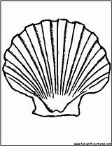 Shell Coloring Scallop Seashell Clipart Printable Clip Shells Colouring Sea Clam Drawing Lost Coloringbay Library Drawings Fun sketch template