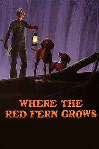 Where the Red Fern Grows - New Video Digital - Cinedigm ...