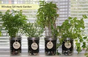 kitchen shelf organization ideas how to make your own window herb garden