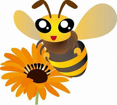 Sunflower Clipart Bumblebee Bees Bee Bumble Clip