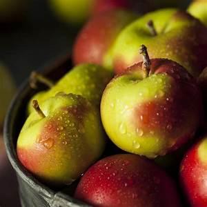 Dtox Pomme Faut Il Opter Pour La Monodite Aux Pommes