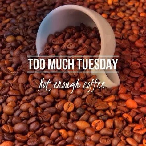 Create/edit gifs, make reaction gifs. 396 best Funny Coffee Jokes, Memes and Humor images on ...