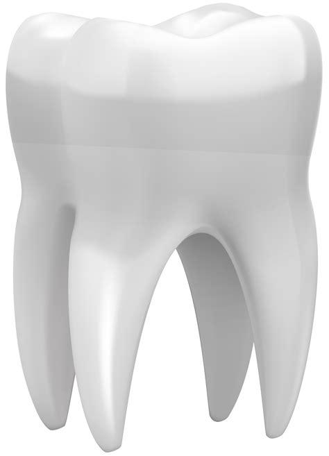 3D Tooth PNG Clip Art - Best WEB Clipart