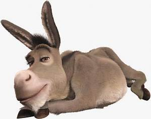 Donkey reports better job satisfaction than Techies in ...