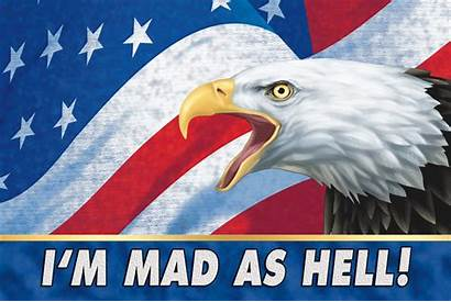 Eagle Bald Animated American Mad Lenticular Hell