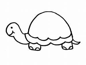 Turtle outline to | Art Ideas | Pinterest