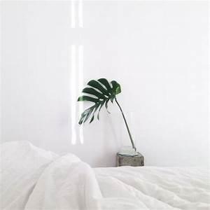 white room Tumblr