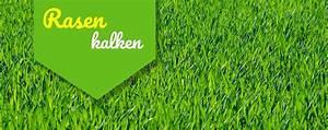Rasen Kalken Wann : rasen kalken so f hlt sich dein rasen wohl ~ Orissabook.com Haus und Dekorationen