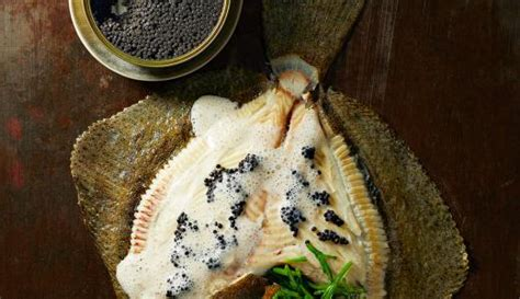 turbot cuit  la vapeur  caviar de hareng sligro ispc