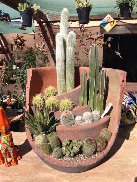 cactus planter love    broken pot  add levels vertical gardening raised