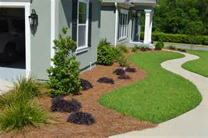 landscaping plant loropetalum landscaping gallery