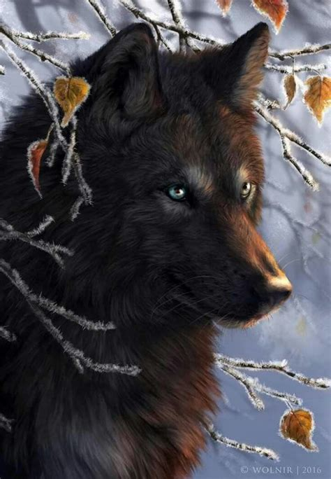 top   fantasy wolf ideas  pinterest mythical