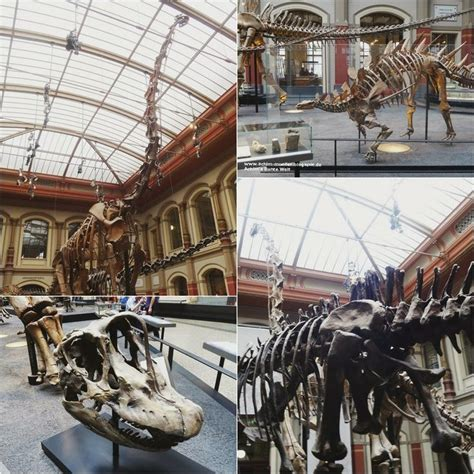 33 Best Blogs About The Museum Images On Pinterest
