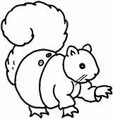 Squirrel Coloring Pages Cute Flying Para Colorear Clipart Animales Play Clipartpanda Cliparts Library Clip sketch template