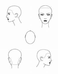 Head Diagram Stencils