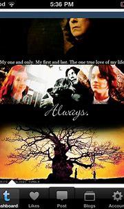 Lily and Snape - Severus Snape Fan Art (23875445) - Fanpop