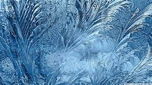 Download Ice Flowers On The Window Wallpaper 1920x1080 ...