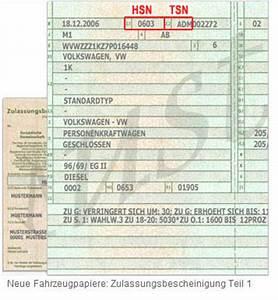 Kfz Steuer Berechnen Hsn Tsn : schl sselnummer ersatzteile finden ber hsn und tsn nummer autoteile direkt24 ~ Themetempest.com Abrechnung