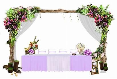 Bunga Pelaminan Dekorasi Decoratiuni Gambar Pernikahan Reception