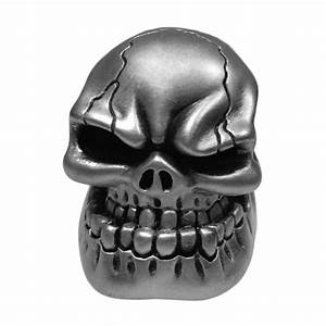 Red Blue Green Silver Black Wicked Skull Universal Car