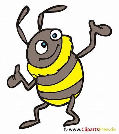 Clipart Cartoon Hummel Kostenlos Bild Bumblebee Hoch