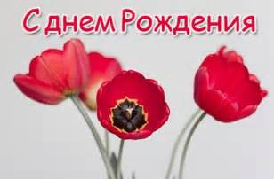 sprüche auf russisch russische geburtstagswünsche für whatsapp oder