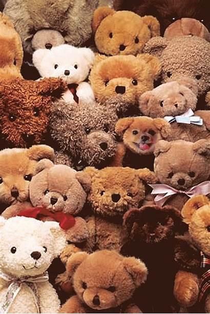 Teddy Bear Bears Teddies Poster Google Collecting