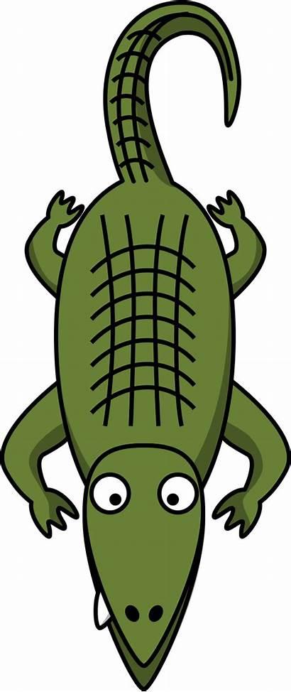 Alligator Clipart Mouth Cartoon Clipartpanda Clip Aligator