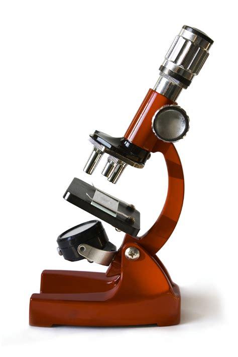 Science Microscope Clipart - Free Clip Art - Clipart Bay