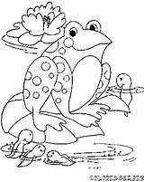 Tadpole Coloring Frog Drawing Template Getdrawings Printable Getcolorings Sketch Templates sketch template