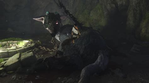 guardian  shocking truth  trico ign