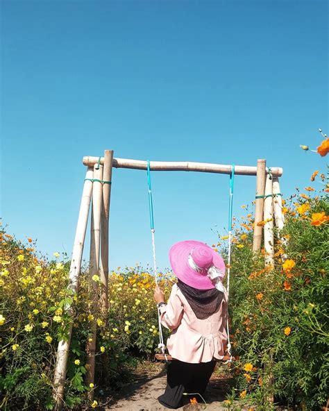 cantiknya taman bunga resoinangun  bantul keindahan
