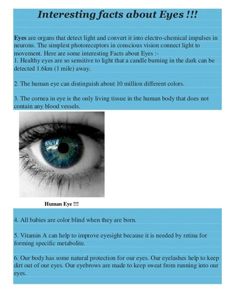 eye color facts interesting facts about