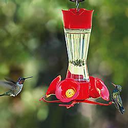 bee guards for hummingbird feeders pet 174 replacement yellow bee guards for hummingbird
