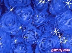 carnations flowers amazing wallpapers blue flowers