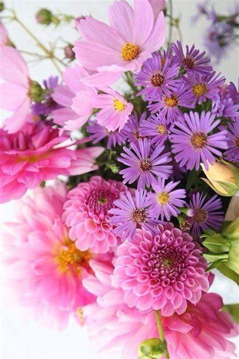 Escoge entre 3 bonitas imágenes tu preferida para celebrar el amor cada día. Flores Bonitas Para WhatsApp