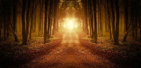 light on the path 6 mistakes i ve made on the spiritual path humans are free