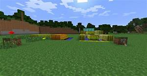 Auto wheat/Pumpkin/Melon Farm Minecraft Project