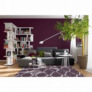 Schner Wohnen Trendfarbe Lounge Seidenglnzend 25 L
