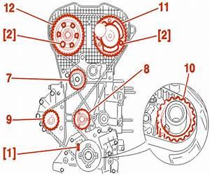 Courroie De Distribution 206 Essence : ess 16v 137 138ch psa ew10j4 remplacement distribution citroen xsara essence auto ~ Gottalentnigeria.com Avis de Voitures
