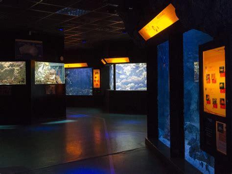 aquarium de lyon prix reduction aquarium de lyon 28 images aquarium de lyon vos vacances scolaires 224 lyon park