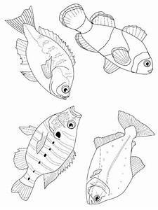Die Besten 17 Ideen Zu Ausmalbilder Fische Auf Pinterest