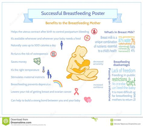 Successful Breastfeeding Poster Maternity Infographic