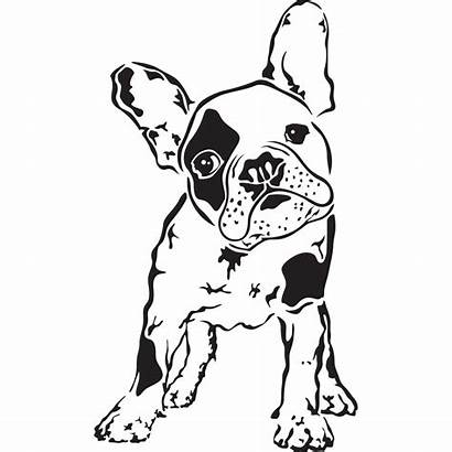 Bulldog French Coloring Silhouette Clipart Terrier Easy