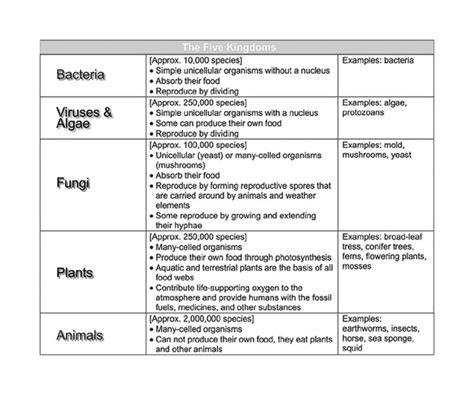 13 Best Images Of The Kingdoms Of Life Worksheet  Animal Kingdom Classification Worksheet, Six