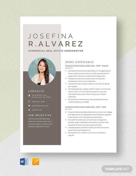 insurance underwriter templates  ai indesign