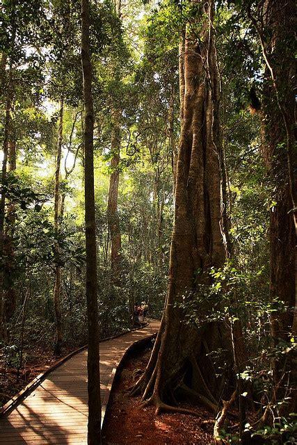 78 best south east queensland images on pinterest queensland australia brisbane and beautiful